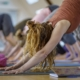 Werbung Yogalehrerausbildung